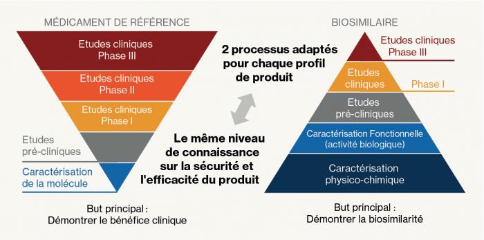 Schéma comparatif des processus de développement des biosimilaires